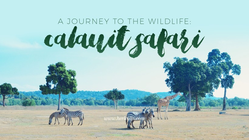 Calauit Safari